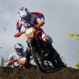 Caselli to Europe!