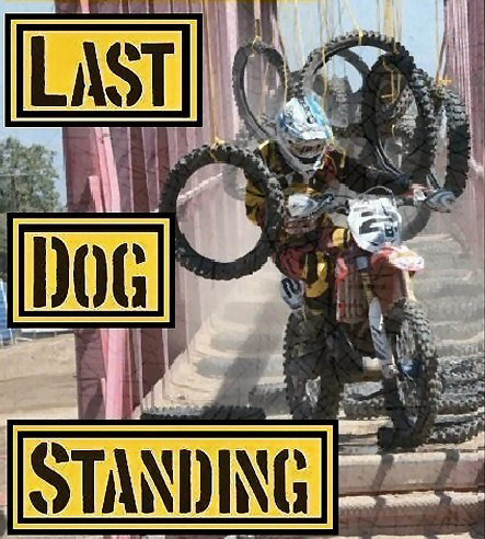 2015 last dog standing results